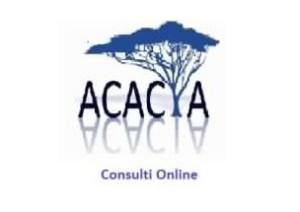 acacia carica homepage 295x201